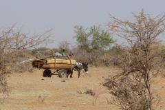 Burkina-4.2