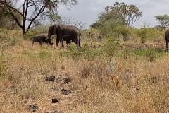 Kenya-01B