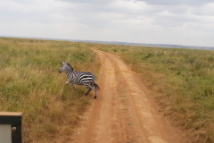 Kenya-01C